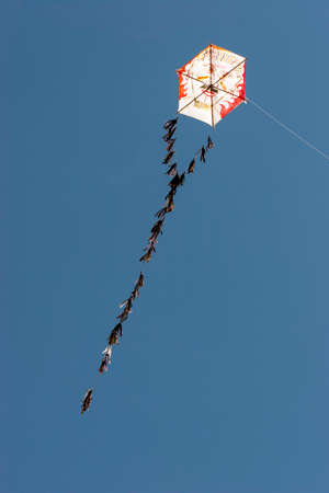 colorful kite flying in the wind photo