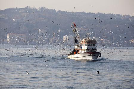 fishing fleet: Tired fishing fleet getting back,in Bosphorus,?stanbul,Turkey Stock Photo