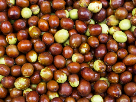 jujube fruits: Ripe jujube fruits background on a  market stall