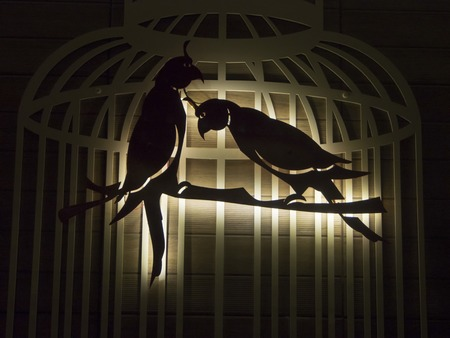 confined space: two birds silhouette in a metal cage
