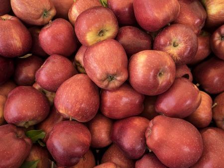 gran grupo de manzanas fondo rojo
