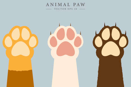 Colorful animal paws. Animal claw concept. Vector drawing. Stock Illustratie