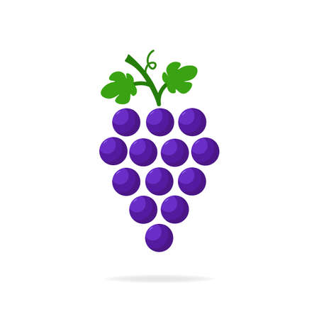 Purple grapes icon. Logo design modern isolated vector illustration.