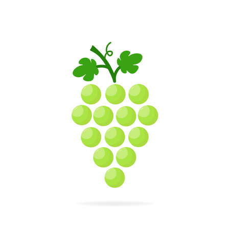 Green grapes icon. Design modern isolated vector illustration.
