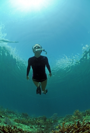 staghorn: Woman snorkeling with sun shining through water and staghorn coral on ocean floor Stock Photo