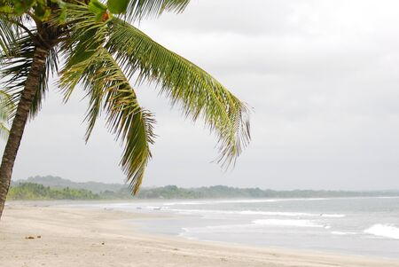 Beautiful beach and palm tree in Costa Rica