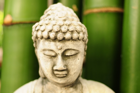 close up of Buddha head with bamboo in the background photo