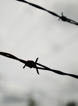 Close up of barbed wire with dark sky in background photo