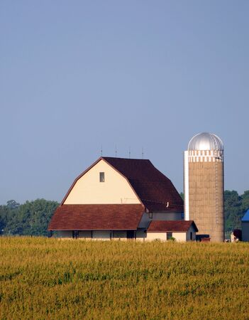 farmhouse with a barn in rural landscape Stock Photo - 15054356