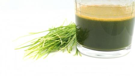 jugo de pasto de trigo con