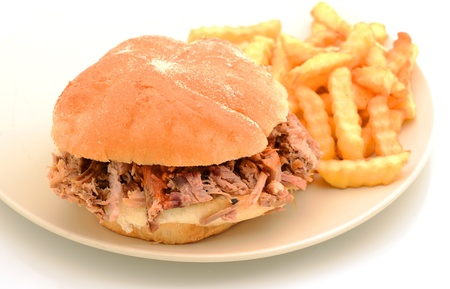 pulled pork sandwich and french fries on plate photo