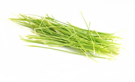 wheatgrass isolated on white background Reklamní fotografie