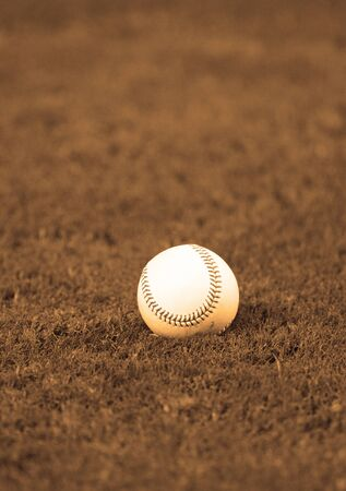 A Baseball lying in grass field with nobody