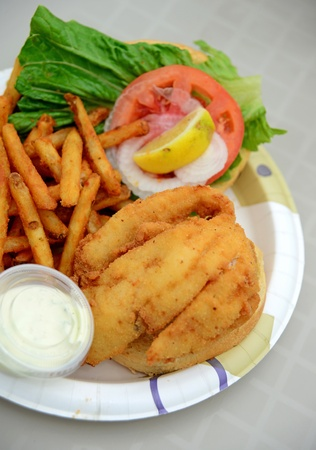 fried fish sandwich and french fries on a plate photo