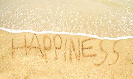 comunicación escrita: felicidad escrito en la línea de la playa en la arena en el océano Foto de archivo