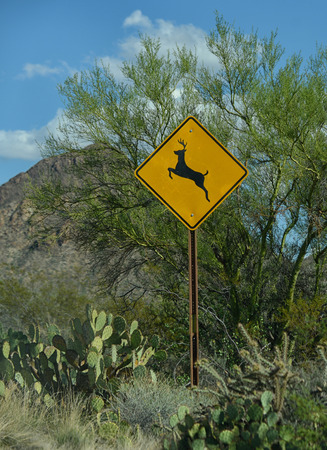 tuscon: deer crossing sign in the desert in arizona Stock Photo
