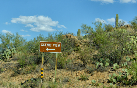 scenic view: scenic view road sign near saguaro national park in tucson