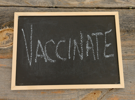 vaccinate: Vaccinate written in chalk on a chalkboard on a rustic background