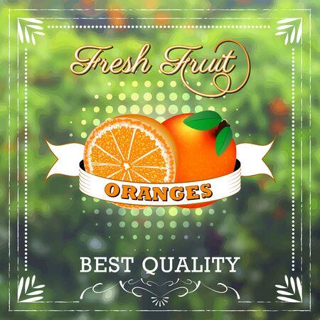frutoso: Fruta alaranjada no fundo natural com fita. Edi