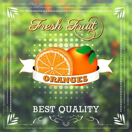 Orange fruit on natural background with ribbon. Fruity edition, vector illustration.