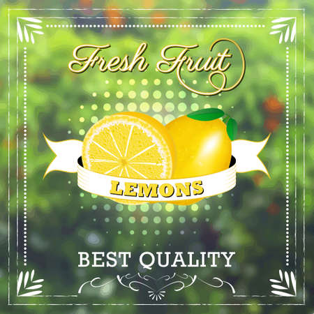 fruity: Lemon fruit on natural background with ribbon. Fruity edition, vector illustration.