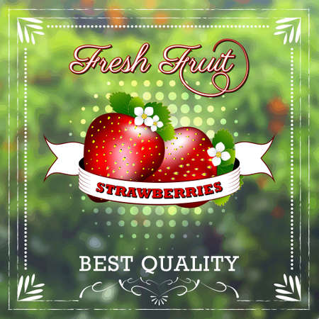 Strawberry fruit on natural background with ribbon. Fruity edition, vector illustration. Illustration