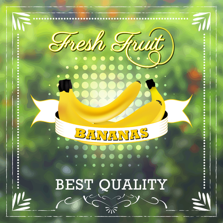fruity: Banana fruit on natural background with ribbon. Fruity edition, vector illustration.