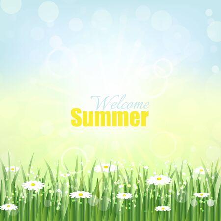 grass flowers: Welcome summer vector background flowers and green grass