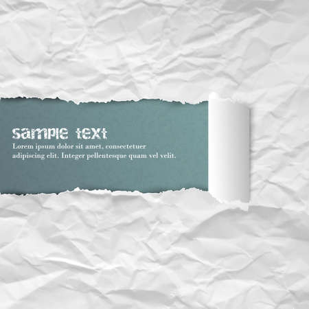 rolled paper: Crumpled ripped rolled vector white paper background for your creative design. Illustration