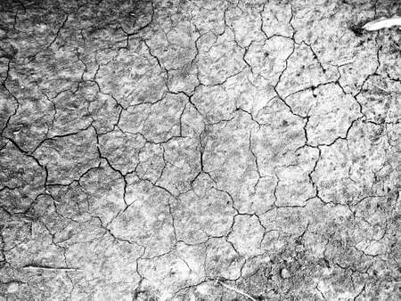 abstract cracked texture background in black and white