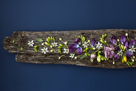 Floral ornament of lowers on rotten wooden plank on blue background. Top view
