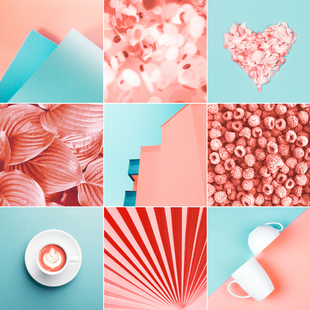 Collage made of nine photos in trendy coral color. Trendy color of 2019. Stock Photo