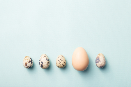 Row of quail and chicken eggs on blue background. Concept of difference. Minimal styled photo.