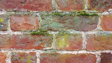 brickwalls: brickwork