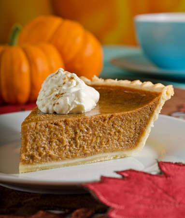 Pumpkin Pie Slice Stock Photo - 22190095