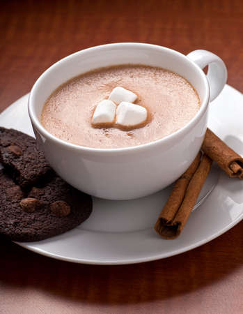 A fresh creamy cup of home made hot chocolate with marshmallows, chocolate chip cookies, and cinnamon. photo