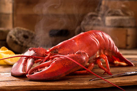 lobster: A delicious freshly steamed lobster in the rough. Stock Photo