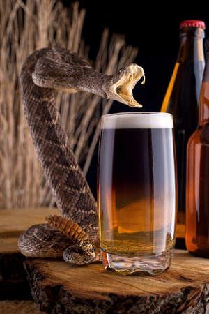 serpiente de cascabel: Un delicioso cóctel de mordedura de serpiente con sidra de manzana y cerveza con la serpiente de cascabel. Foto de archivo