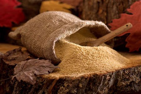 A burlap bag of delicious natural maple sugar in a maple forest setting.