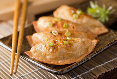A plate of delicious asian pot stickers with scallions. Stock Photo
