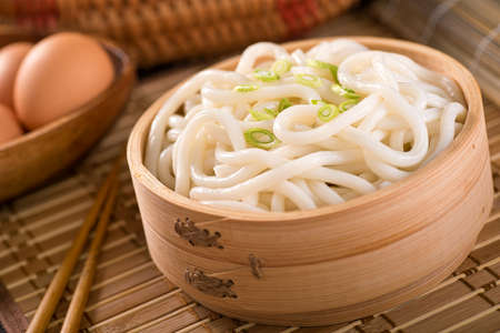 Delicious Japanese udon noodles with green onion.