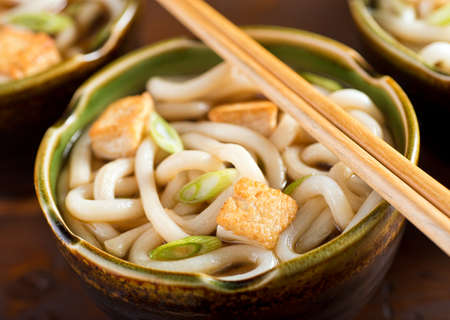 noodle bowl: A delicious udon noodle bowl with tofu and green onion.