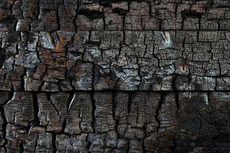 charred: Charred Wood Background Texture Stock Photo