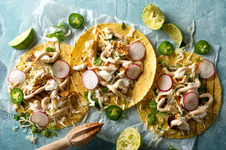 Delicious tacos with grilled fish, cilantro, lime, cabbage, carrot, jalapeno and radish with mexican chili crema sauce.