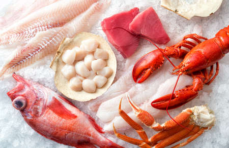 A selection of Atlantic Ocean seafood on ice. 스톡 콘텐츠