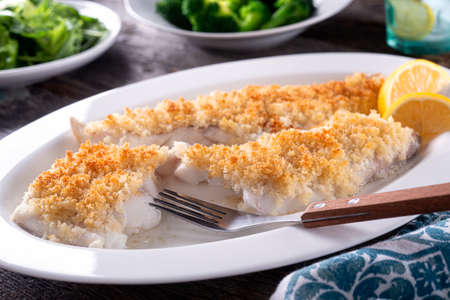 Delicious oven baked panko crusted fish fillets. 스톡 콘텐츠