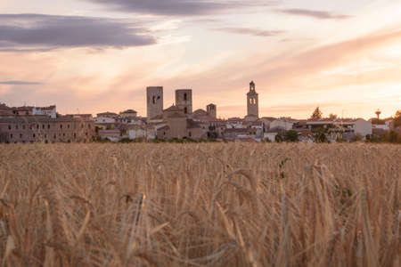 Views from the hill with a cereal field in the first term of Arevalo, Avila, Castilla Leon, Spain, Europe