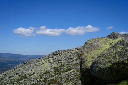 Mountain goat on some stones in the Sierra de Gredos, Avila, Castilla Leon, Spain, Europe. Natural scene.