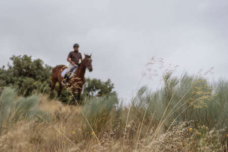 man riding a horse through an unfocused downhill field. Foto de archivo