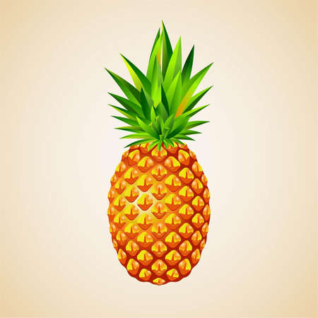 Fresh pineapple 3D illustration, fruit icon, exotic food Stock Vector - 17901415